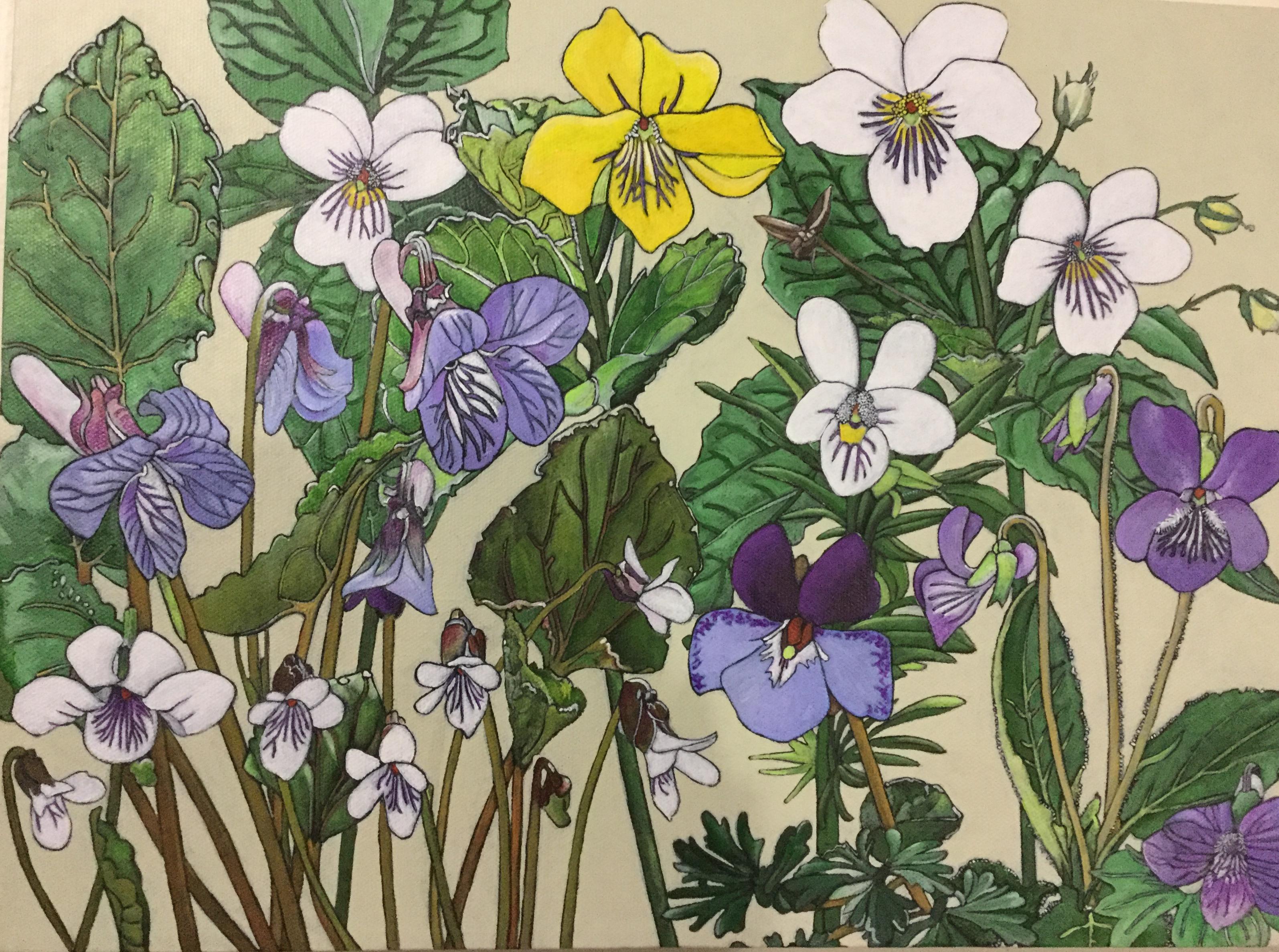 Violets-Frances Coates