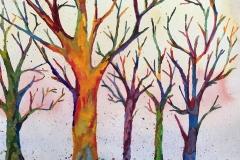 Bois Des Reves- Ann St. Clair Lesman